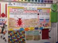 Canberra maths working wall